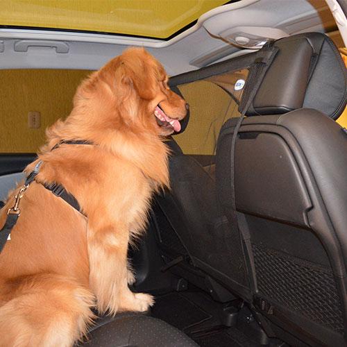 Tela de Proteção Pet Guard