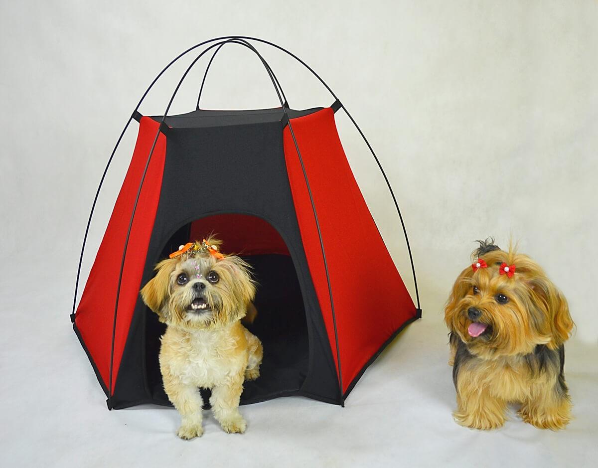 Tenda Pet Camping