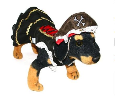 Fantasia para Cachorro Vestido Pirata