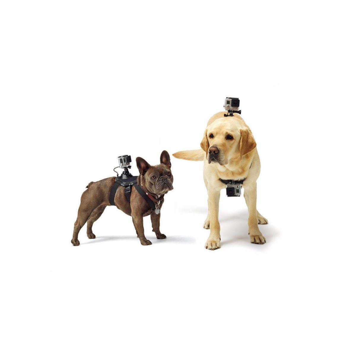Suporte de Cachorro Dog para Câmeras de Ação GoPro Hero SJCam Xiaomi