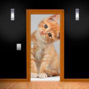 Adesivo de Porta Gato Caramelo de Lado