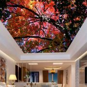 Adesivo Decorativo de Teto Árvore Outono