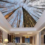 Adesivo Decorativo de Teto Galhos de Árvore