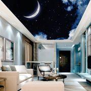 Adesivo Decorativo de Teto Noite Lua
