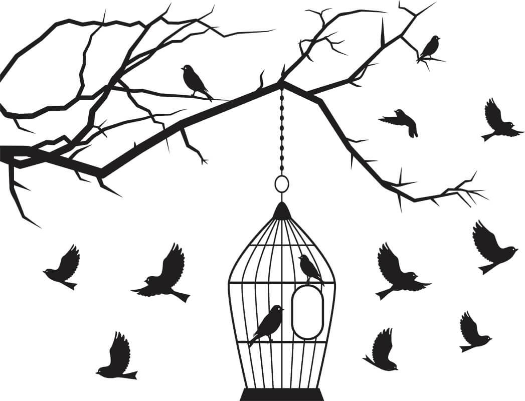 Adesivo de Parede Gaiola e Pássaro