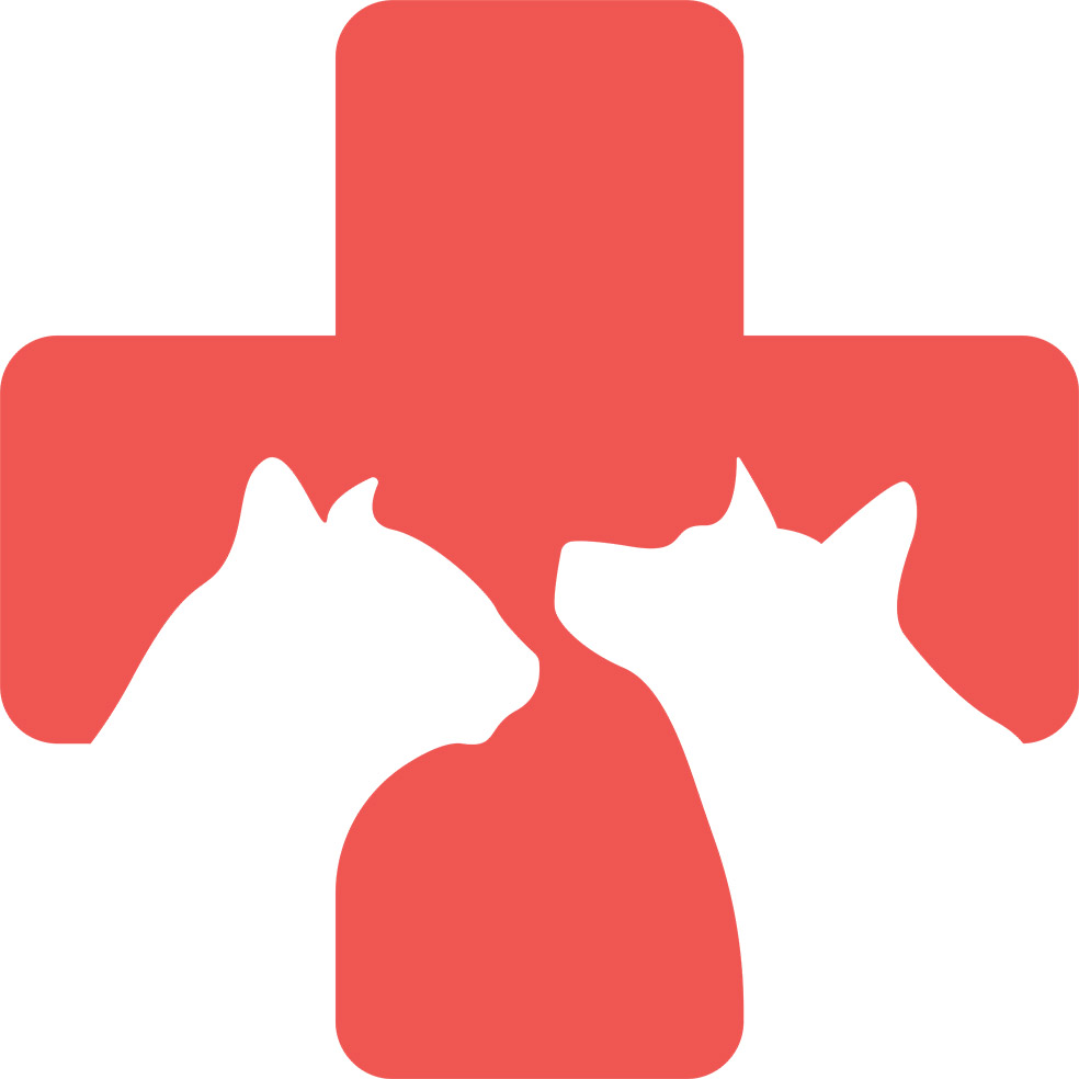 Adesivo de Parede Profissões Veterinária Pet
