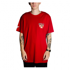 Camiseta NBA Chicago Bulls Vermelha