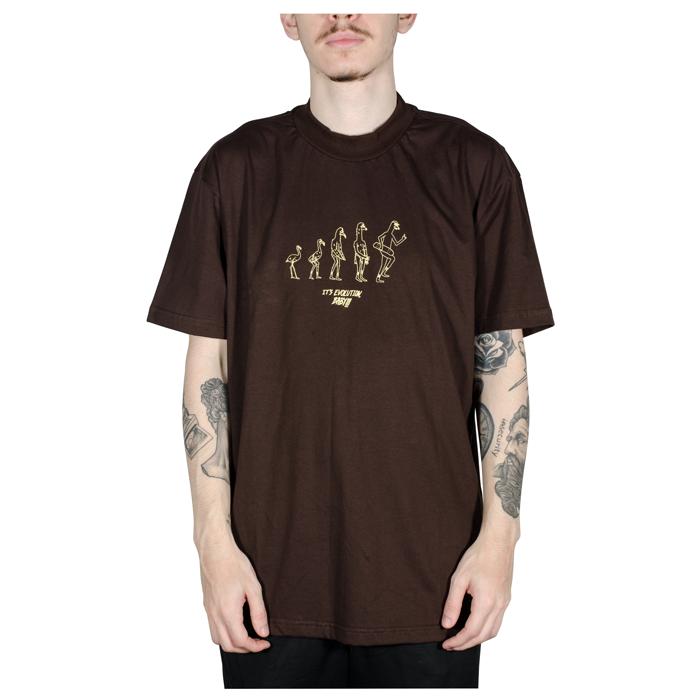 Camiseta Altai Evolução Marrom