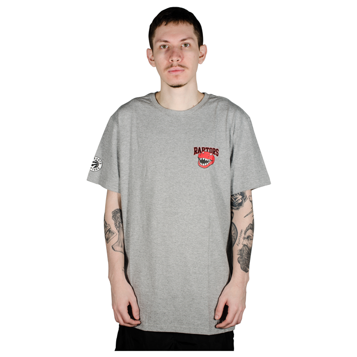 Camiseta NBA Toronto Raptors Mascote Cinza