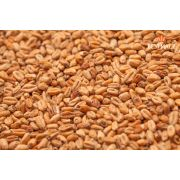 Malte Best Malz - Wheat Dark (Trigo Escuro) - 1kg