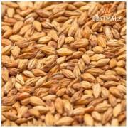 Malte Agraria Munique - 1kg