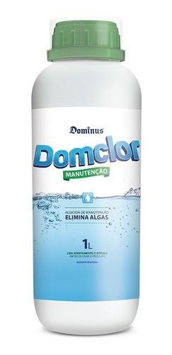 Kit Limpeza Para De Agua Piscina Tratamento Algicida Manutenção Decantador Cloro