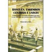 Banguês, Engenhos Centrais e Usinas