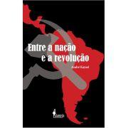 Entre a nação e a revolução