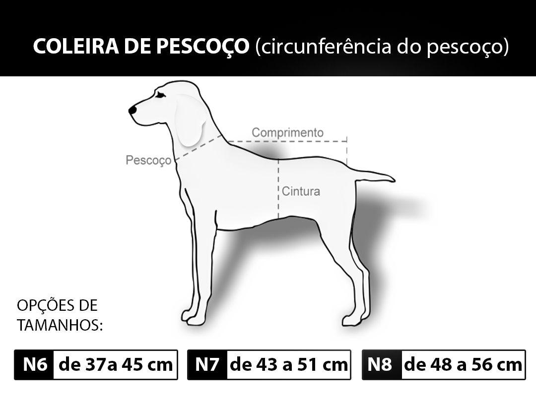 Coleira guia Couro Com Spikes  Pit Bull american rottweiler Areia