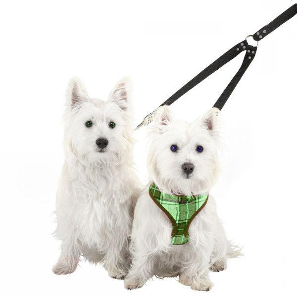 Guia dupla Adestramento E Passeio De Cães estampada