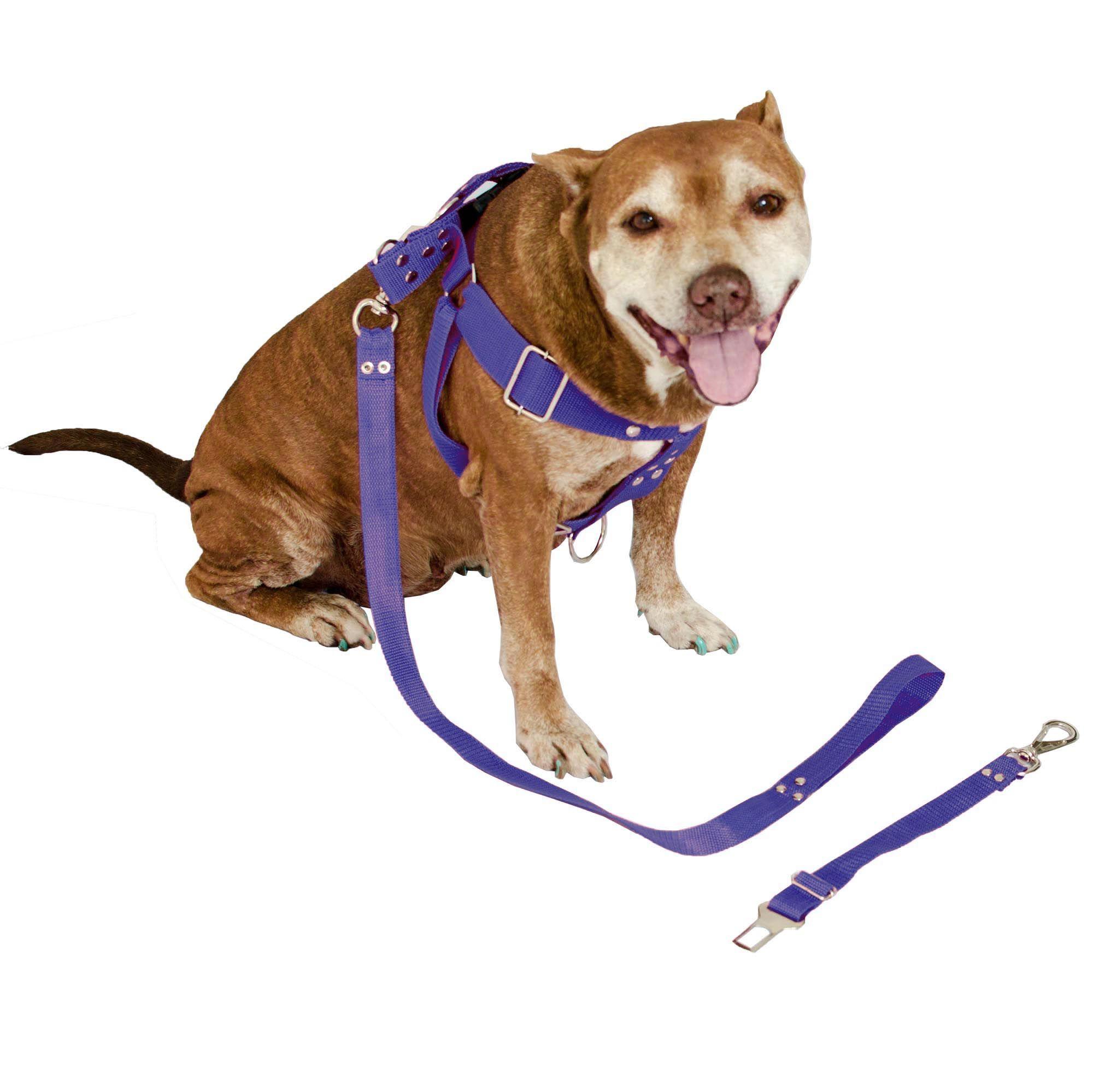 Peitoral Cachorro com Guia e Adaptador serve Pit Bull Labrador