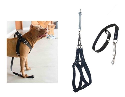 Peitoral Cachorro Grande E Medio Fita Resistente