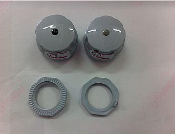 Botões de torneira gelada e natural (Prata)