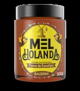 Mel HOLANDA Eucalipto Pote 500g