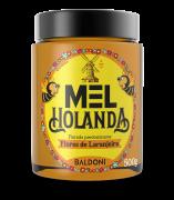 Mel HOLANDA Laranjeira Pote 500g