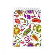 Caderneta - Bactérias