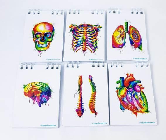 Caderneta  - Anatomy -  Kit com 6