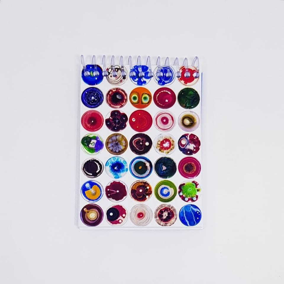 Caderneta - Fungo - Placa de Petri