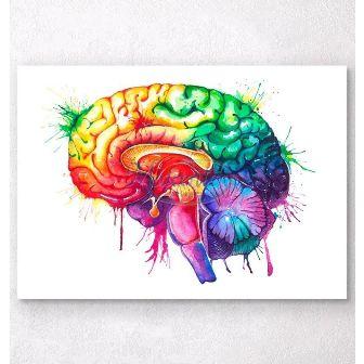 Gravura - Cérebro