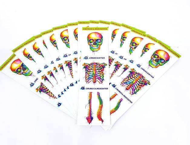Marca Páginas - Anatomy