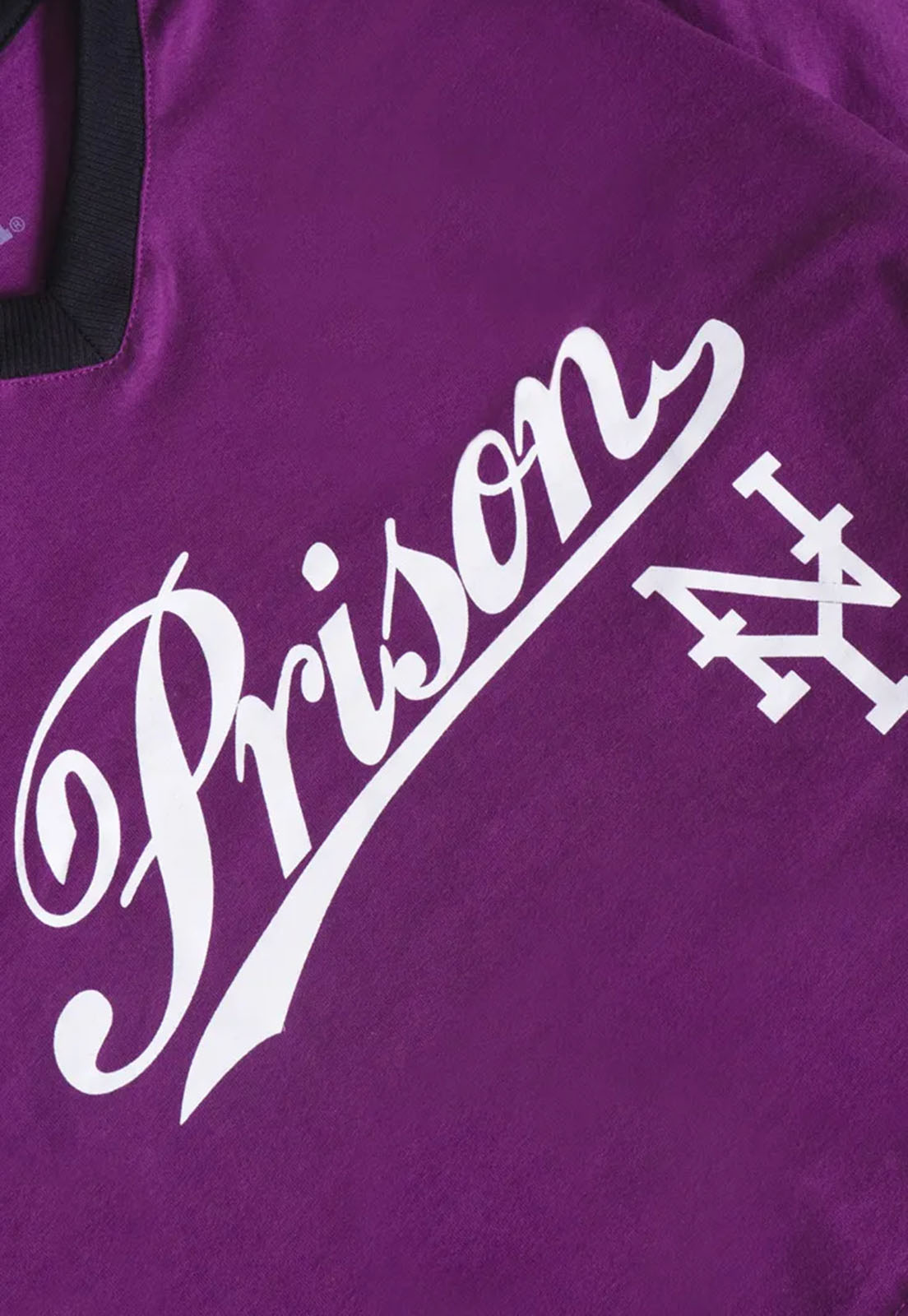 Cropped Prison NY Roxo