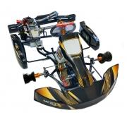 KART 2.0 COM MOTOR FORTEX G6 - 1174