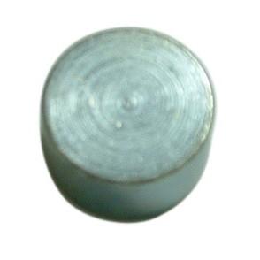 Pistão da  Pinça Freio Mega X 25mm - 333
