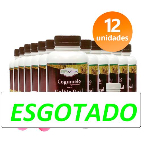 COGUMELO C/ GELEIA REAL 12 FRASCOS + BRINDES + FRETE GRÁTIS
