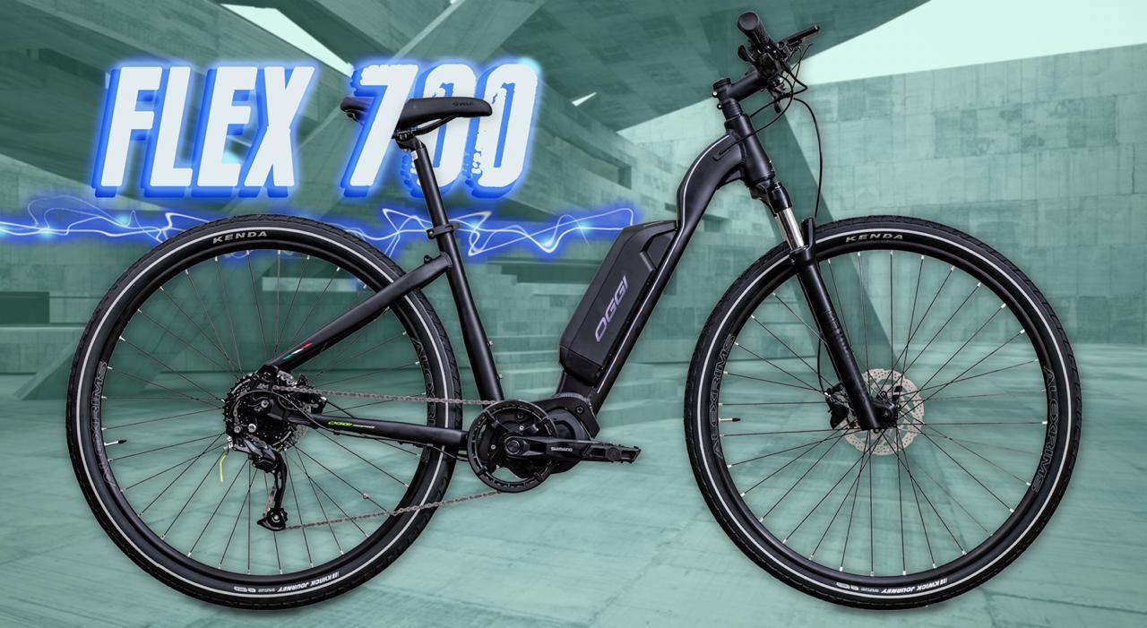 Bicicleta OGGI E-Bike Flex 700 2020 - 9v Shimano Altus - Preto/Roxo
