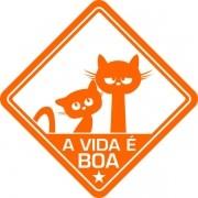 Adesivo Coleção Vinil Studio - A Vida É Boa! Gato