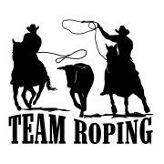 Adesivo Team Roping