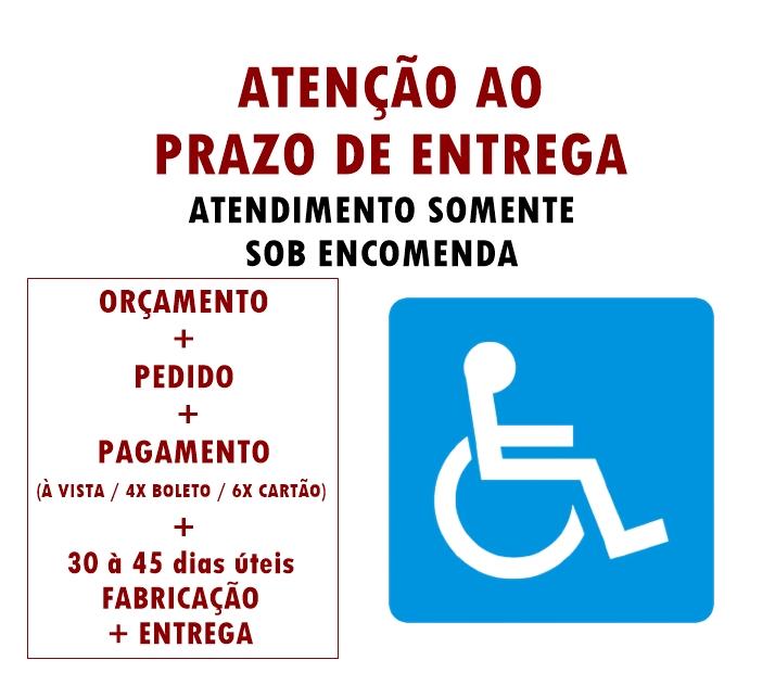 PLAYGROUND ADAPTADO CADEIRANTE GANGORRA DE FERRO   - Casinha Infantil Decorlazer
