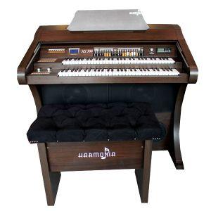 Órgão Hamonia HS-500 N06 Tabaco