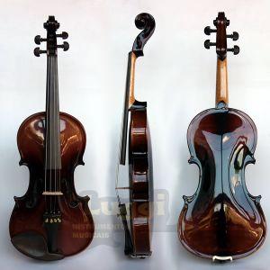 Violino 4/4 Nhureson Evbc Madeira Exposta 714 Brilho