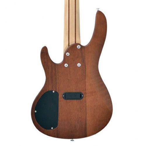 Baixo 5 Cordas Phx Bs-5 Top V Special  - Luggi Instrumentos Musicais