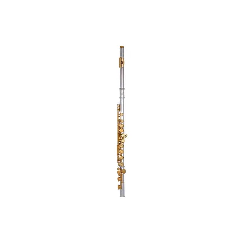 FLAUTA TRANSVERSAL HOYDEN HFL-25D PRATA/DOURADA  - Luggi Instrumentos Musicais