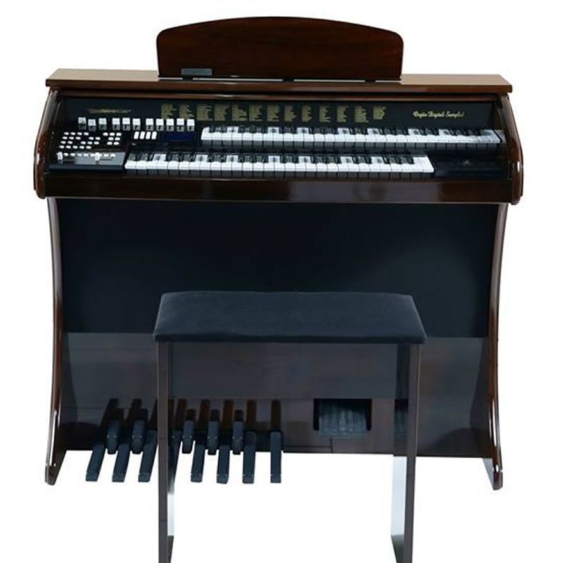 Órgão Acordes Série Gold Ax100 Imbuia - 49 Teclas  - Luggi Instrumentos Musicais
