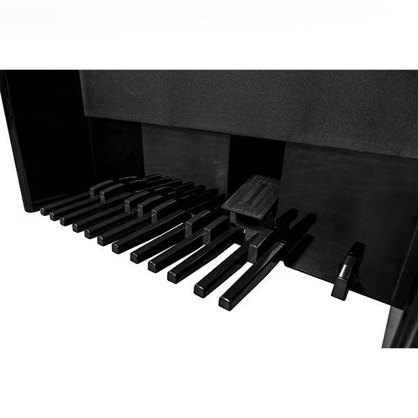 Órgão Acordes - AC500 Elegance Preto - 61 Teclas  - Luggi Instrumentos Musicais