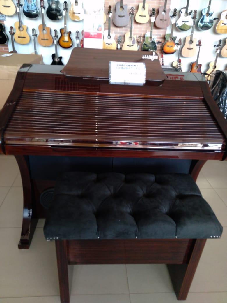 Órgão Hamonia HS-500 Tabaco  BRILHO - 61 Teclas  - Luggi Instrumentos Musicais