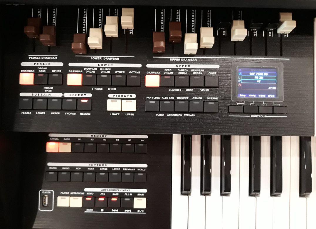 Órgão Tokai Md-20 Preto  - Luggi Instrumentos Musicais