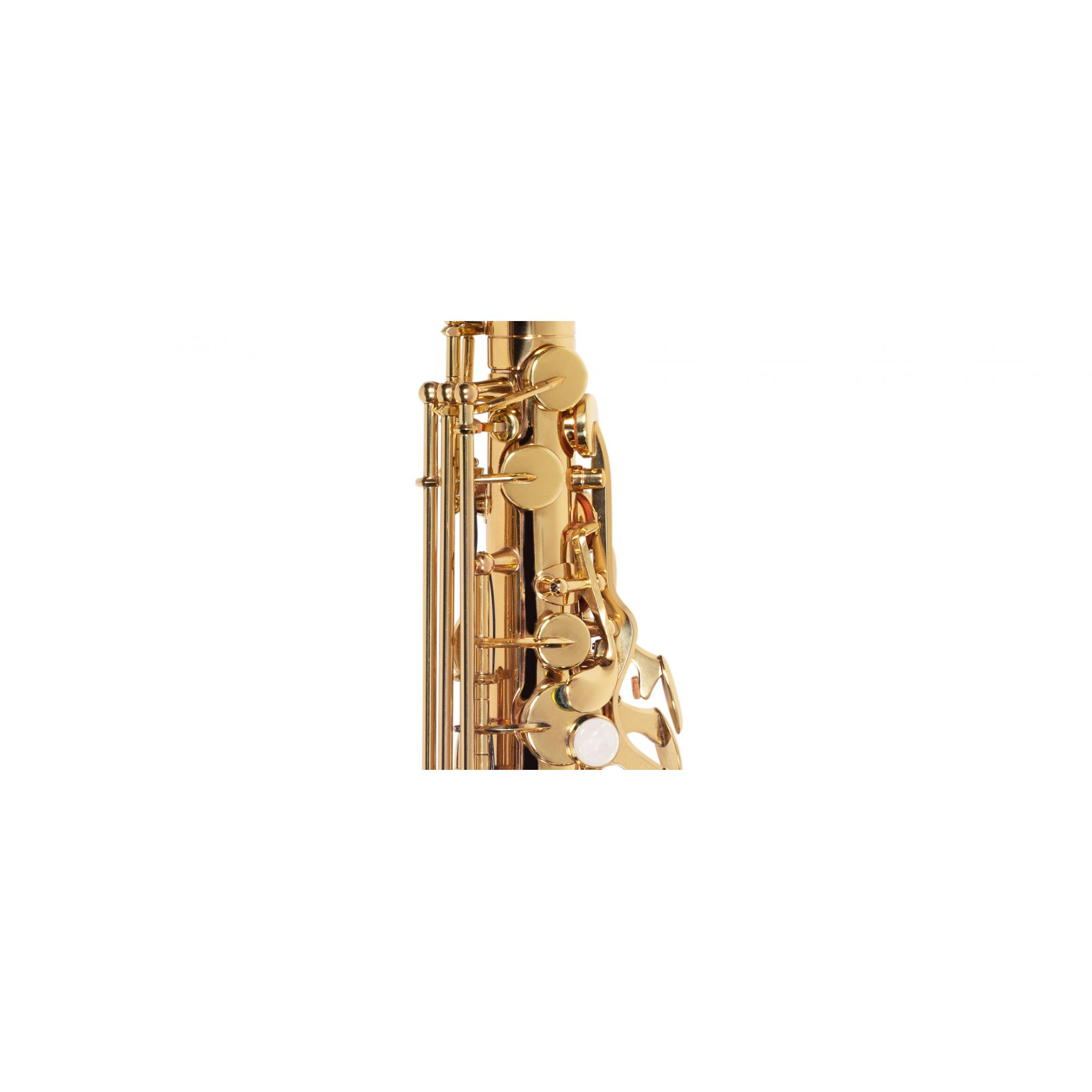 Sax Alto Michael Wasm30N  - Luggi Instrumentos Musicais