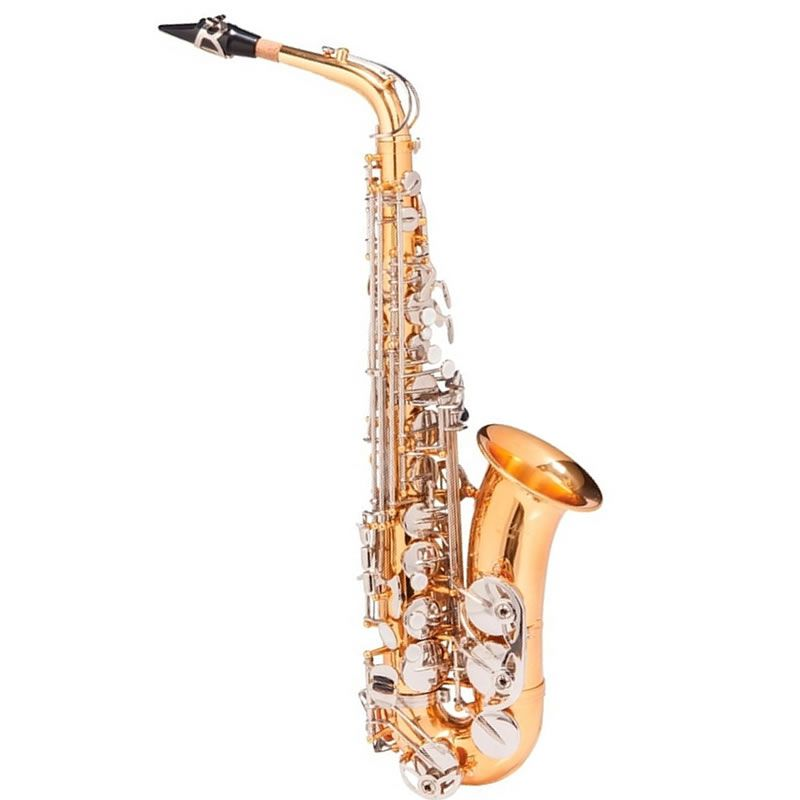 Sax Alto Michael Wasm49 Dourado  - Luggi Instrumentos Musicais
