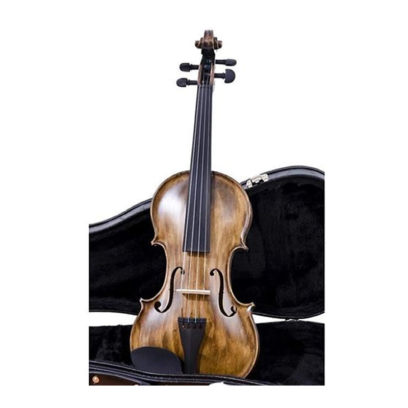 VIOLA ARCO 4/4 NHURESON ALLEGRO 40 COMPLETA  - Luggi Instrumentos Musicais