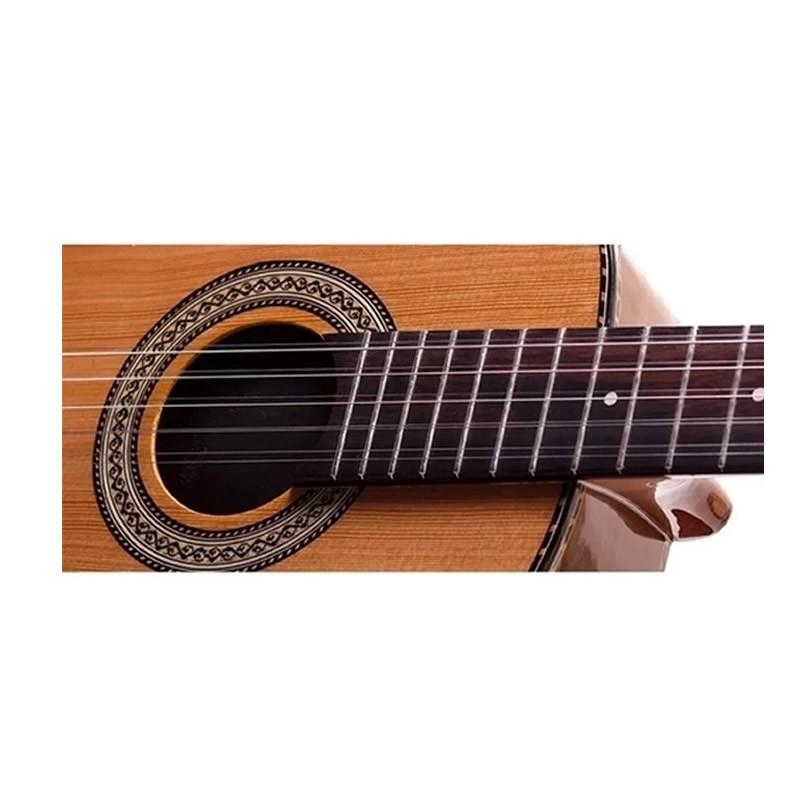 VIOLA ROZINI RV215AT PRESENCA BRASIL CINTURADA Lp Eletrica  - Luggi Instrumentos Musicais